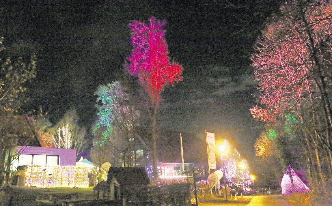 Tausend Lichter erhellen das Waldhaus
