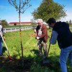 Baumpflanz-Aktion in Hildrizhausen: Ein Zeichen für den Klimaschutz